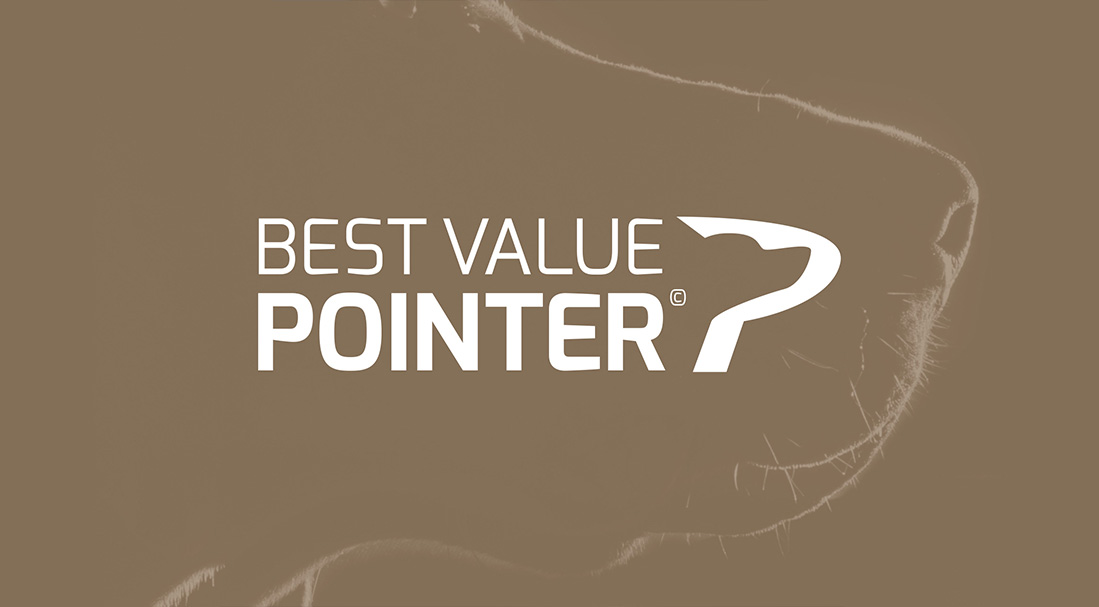 Best Value Pointer